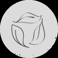 icona-4